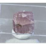Шомиокит-(Y), Умбозерский ГОК, Ловозеро, 10х12х7 мм.